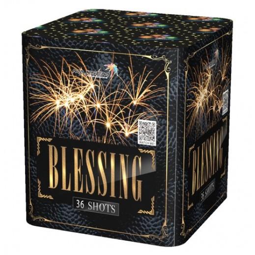 SB36-01 BLESSING (4/1)
